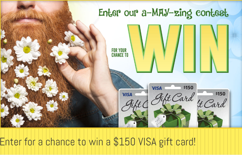 Pay2day--visa Gift Card Giveaway