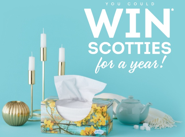 Scotties Win For A Year Sweepstakes - Win Boxes Of Scotties Facial Tissues