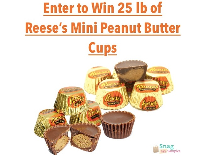 25 lb Reese's Mini Peanut Butter Cup Giveaway