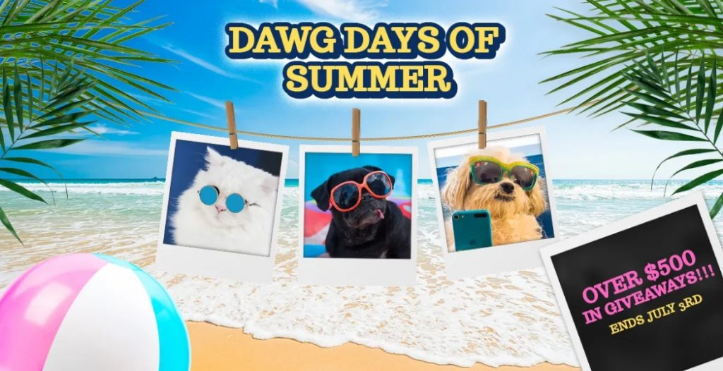 Waggles Dawg Days of Summer Giveaway