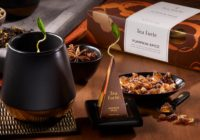 TeaForte Pumpkin Spice For Two Giveaway